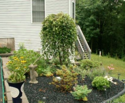 Home Landscaping Materials
