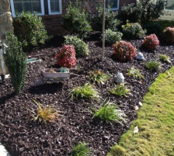 Completed Rubber Mulch Landscaping