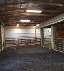 Rubber Mulch for Horse Arenas