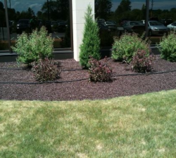Commercial Landscaping Mulch